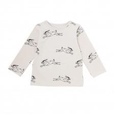 iglo+indi shirt hare